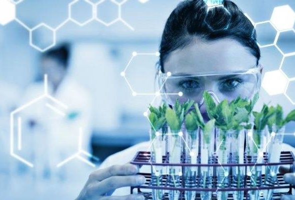 hemp testing lab